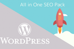 All in One SEO Pack設定方法