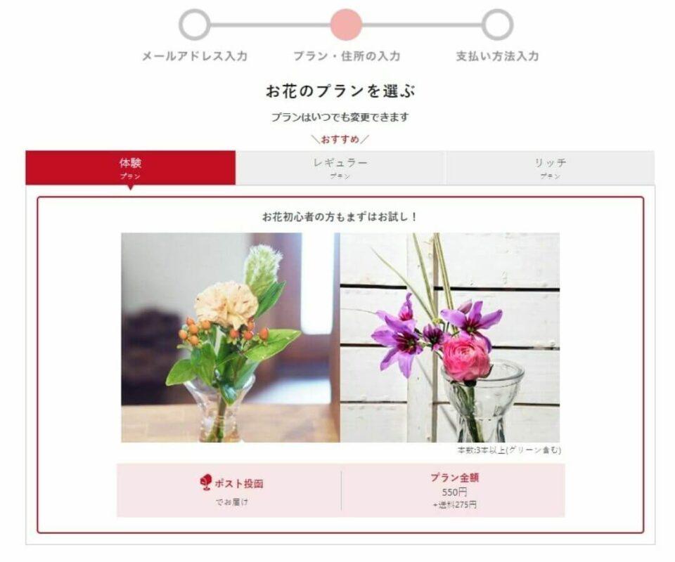 ブルーミー申し込み方法 花のプランを選ぶ