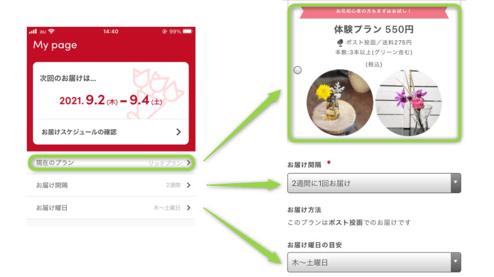 ブルーミー プラン変更 アプリ