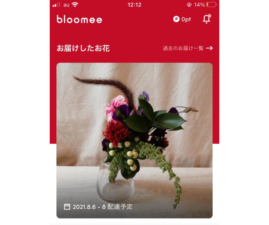 Bloomee(ブルーミー)リッチプランの口コミレビュー