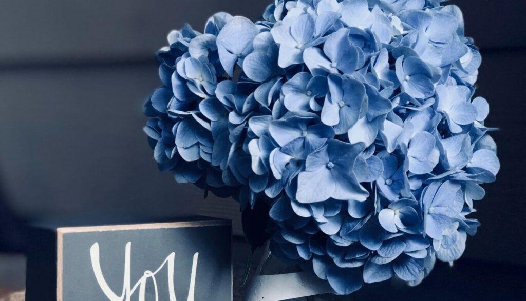 青い花の持つ効果とは?