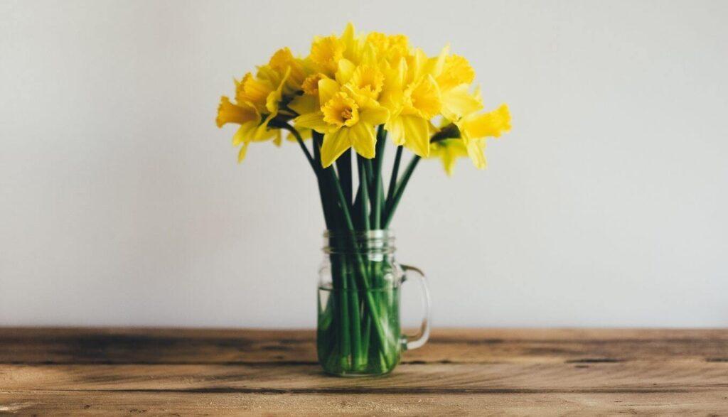 黄色い花の持つ効果とは?