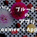 bloomee(ブルーミー)のアプリでポイントをためる方法とは